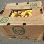 Bananenkiste1